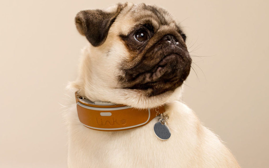 Link AKC Smart Collar: A stylish dog collar that will keep your best friend safe and healthy